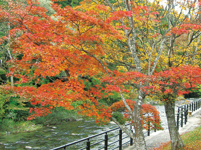 秋の宮温泉郷